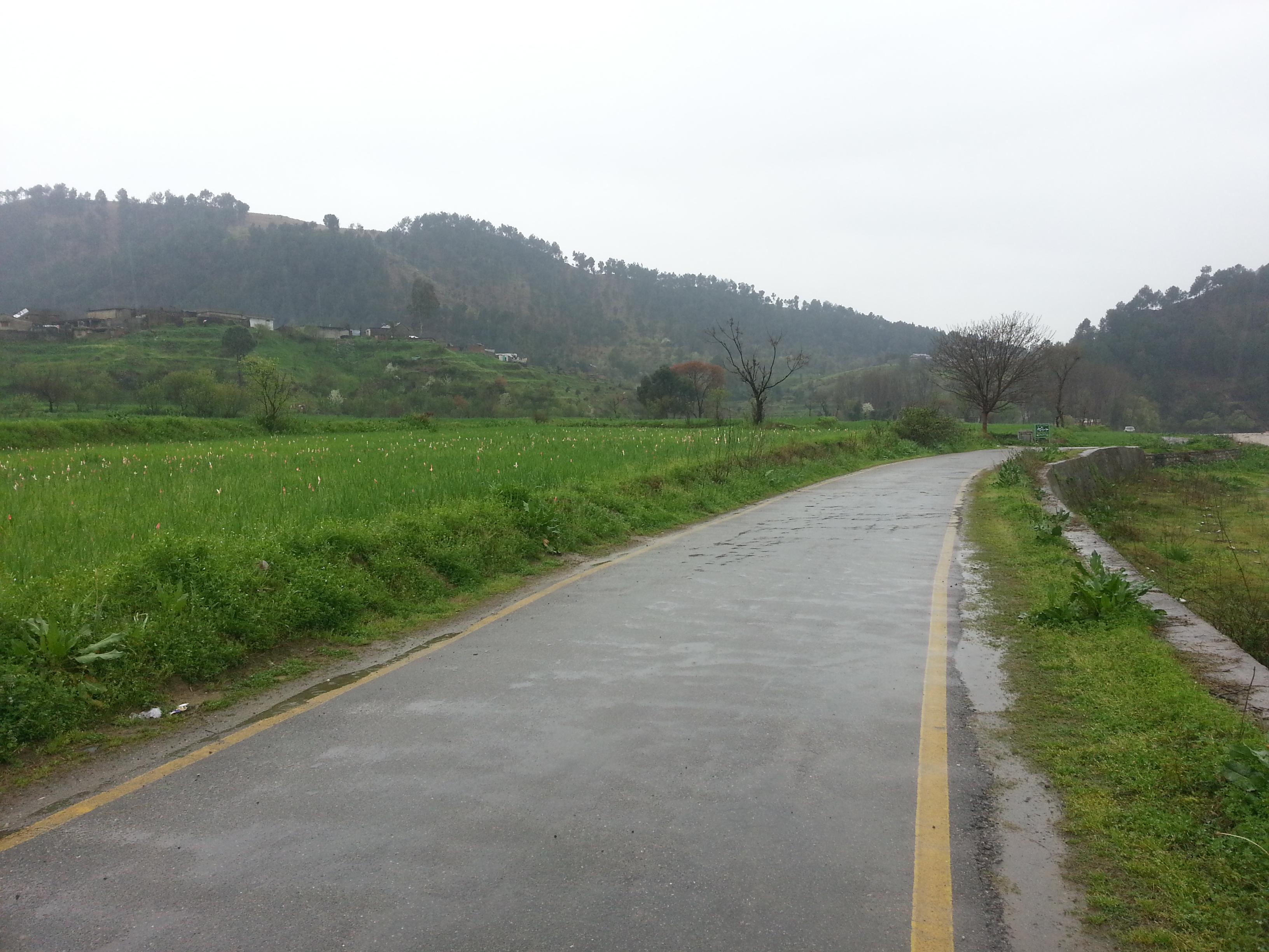 Beautiful scenery of wet road & Ghanttol flowers field