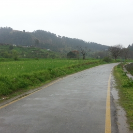 Beautiful scenery of wet road & Ghanttol flowers field