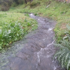 Natural water stream